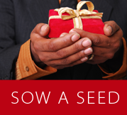Sow a seed image
